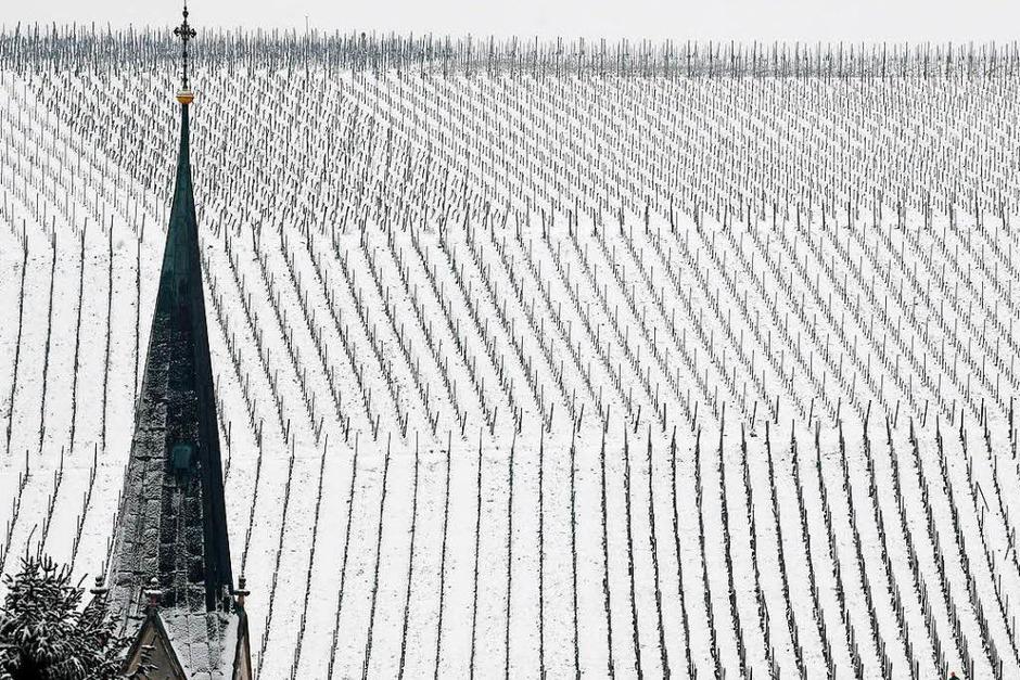 In Ebringen versinken die Weinberge im Schnee (Foto: dpa)