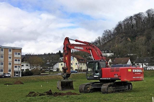 Arbeiten für Holzhäuser beginnen