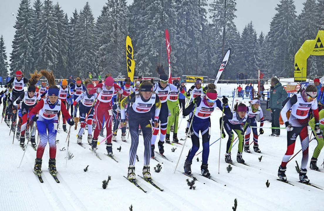 Start frei zum Massenstartrennen für d...lauftalente Deutschlands am Notschrei   | Foto: Helmut Junkel