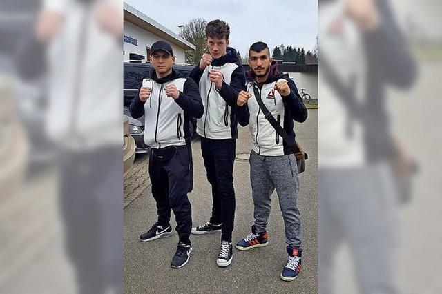 Trio mit sechs Fäusten