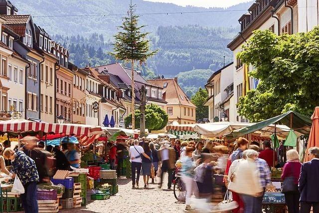 Der Baden-Württemberg-Tag: Offizieller Auftakt der Heimattage