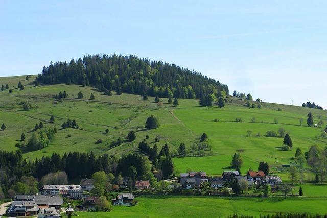 Streit in der Idylle: Wie ein geplantes Berggasthaus Bernau entzweit