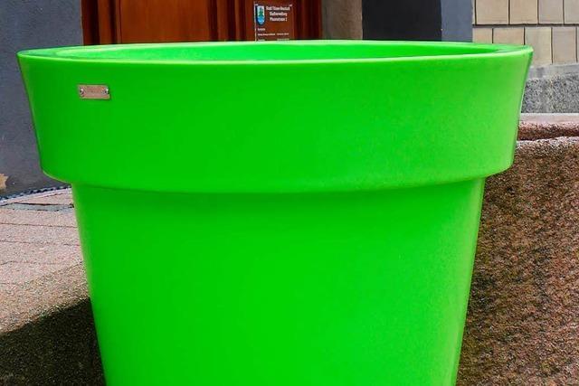 Arbeitsgruppe geht dem Aufschrei wegen neonfarbenen Plastikkübeln in Neustadt nach