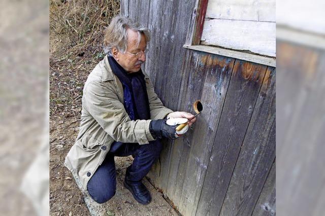 Naturschutzwart Claus Georg Krieger kümmert sich um Nistmöglichkeiten für Wiedehopfe