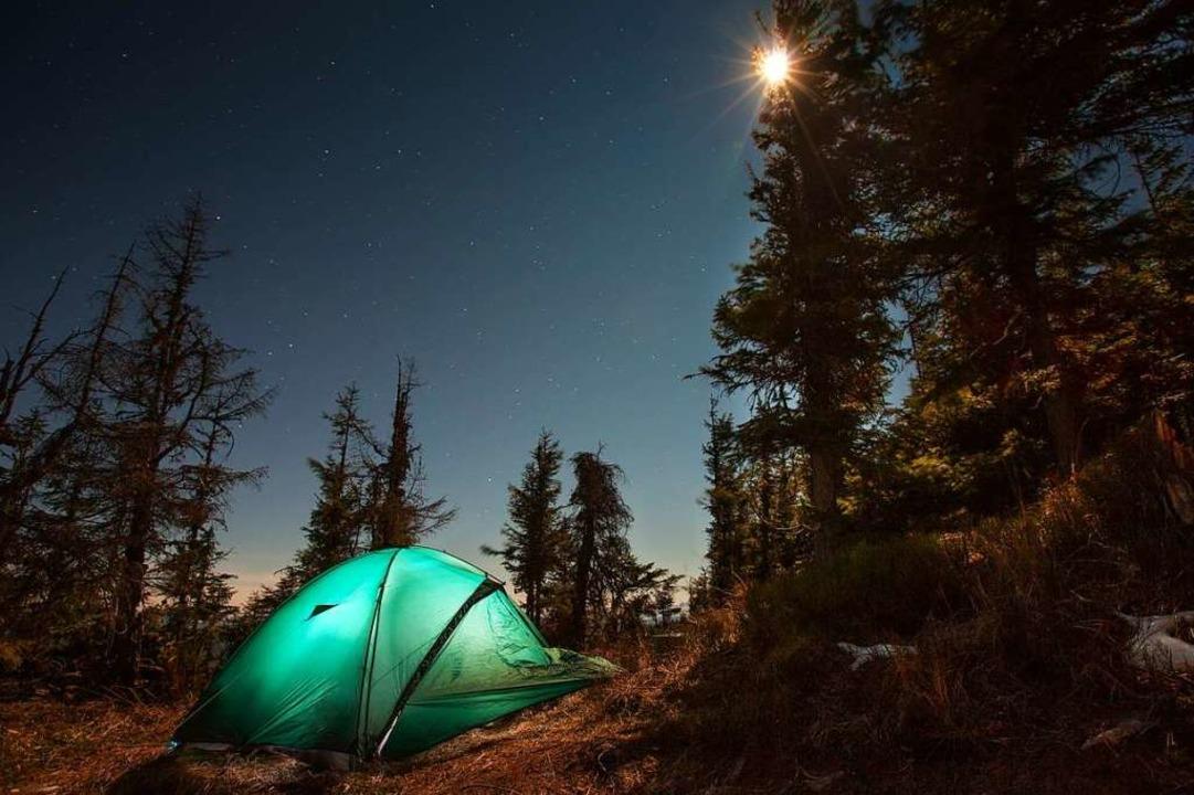 Im Häuserner Wald soll ein Trekkingcamp entstehen.  | Foto: Maygutyak  (stock.adobe.com)