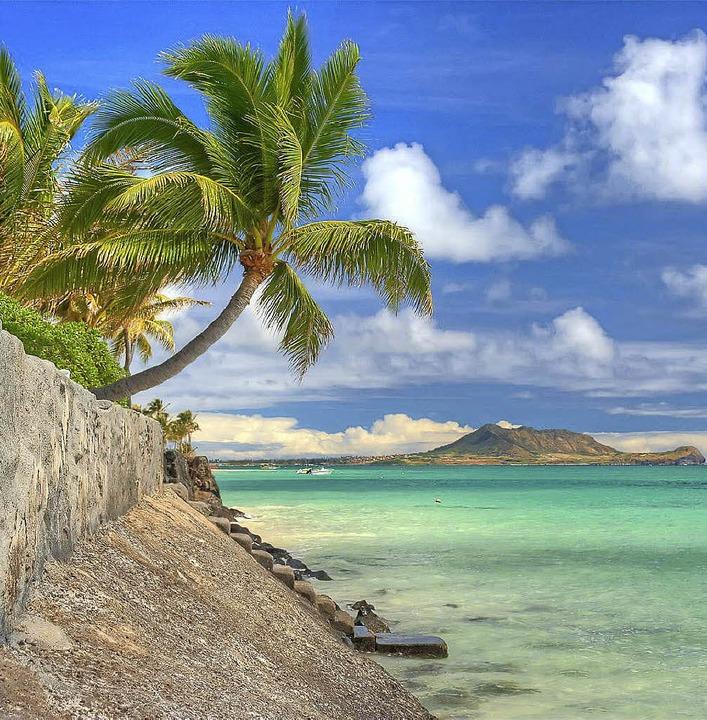 Der  Gesangverein Eichen (rechts) wird...ische Pazifikinsel entführen (links).   | Foto: ZVG/Hawaii Tourism Boar<ZAM-BlindText>/</ZAM-BlindText>D/Hans-Jürgen Hege