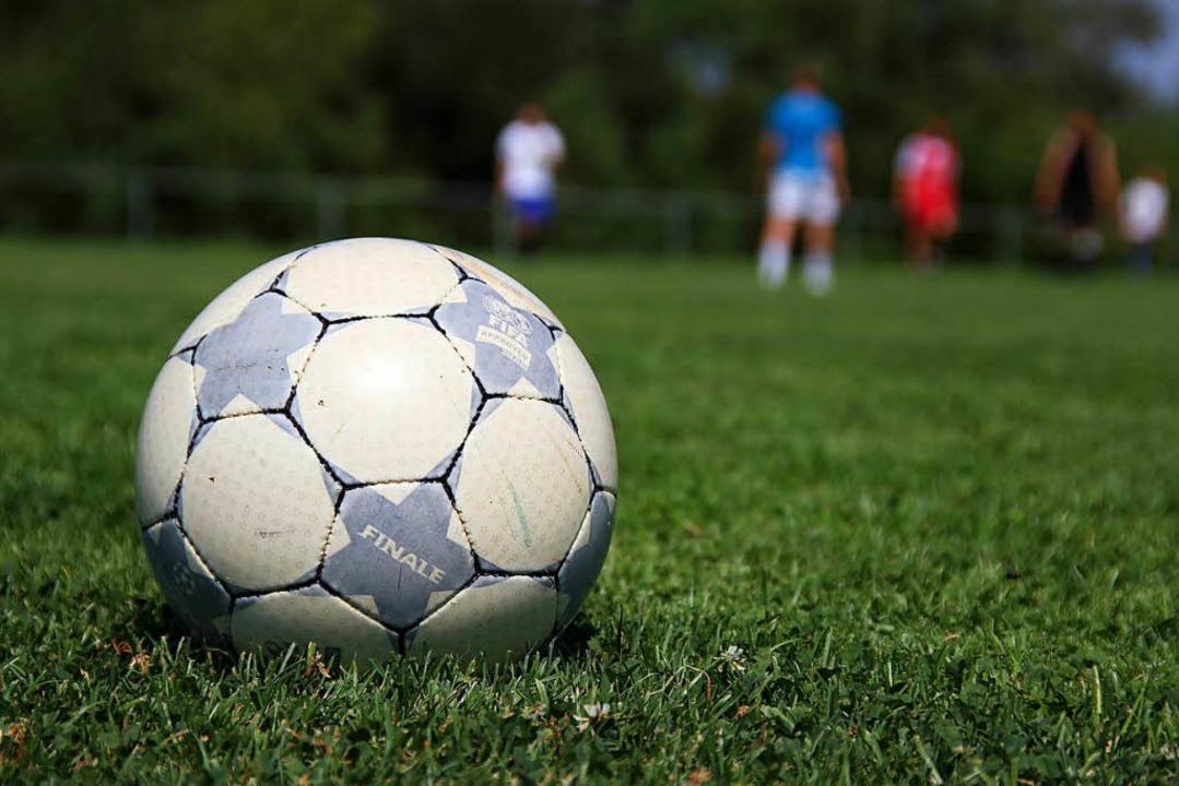 Fußball auf dem Rasen? Der FC Kandern wünscht sich einen Kunstrasenplatz.    Foto: Michael Gilg