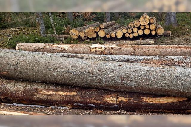 Bis Mai soll das Sturmholz weg sein