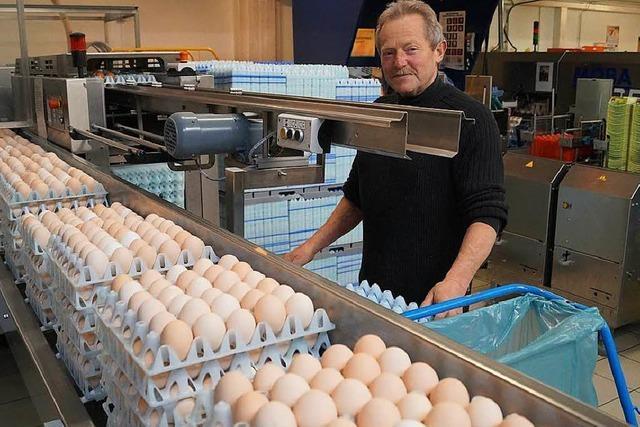 Auf dem Geflügelhof Zapf sind Eier an Ostern ein Muss