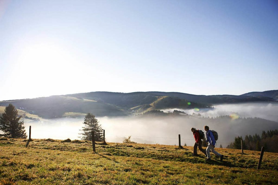 Der Schauinsland wird für Wanderer doch nicht zur No-Go-Area.  | Foto: Christoph Eberle/STG