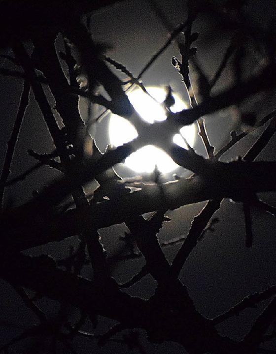 Der helle Mond beschert eindrückliche Bilder.  | Foto: helena kiefer