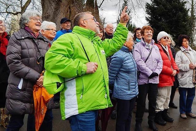 3000-Schritte-Aktion führt auf die Adelberg-Route in Rheinfelden