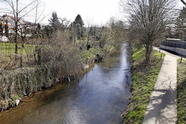 Stadt will sich Uferstreifen sichern