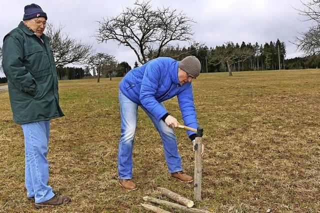 Hubertshofener entdecken alte Obstbaumsorten neu