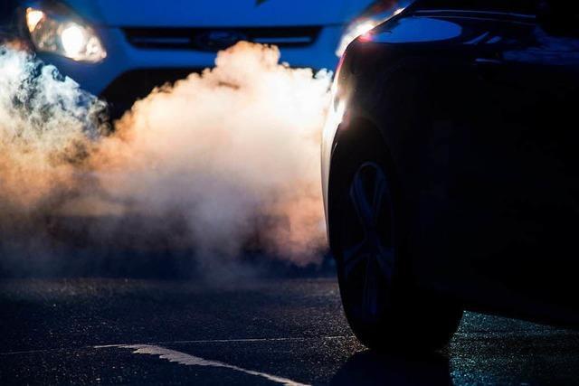 Autohändler im Schwarzwald spüren Diesel-Skandal unterschiedlich