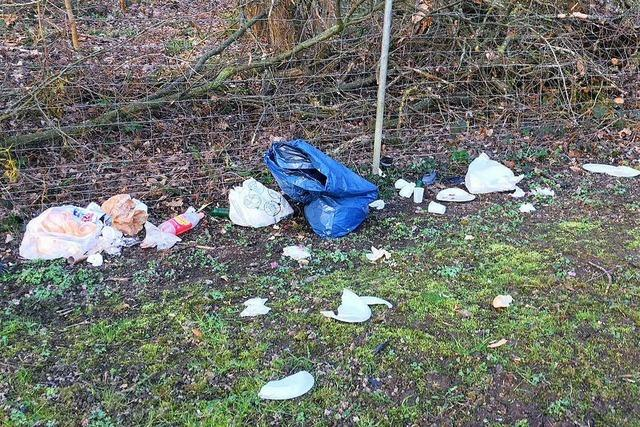 Stadtteilverein Friedlingen sammelt Müll unter der Autobahnbrücke