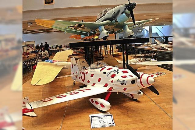 Modellfluggruppe Wehr feiert 50-Jähriges mit großer Ausstellung