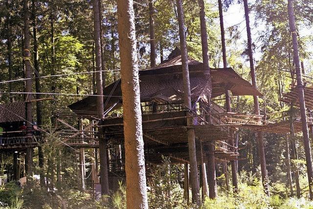 Evangelische Jugend baut bei Nordrach ein Baumcamp