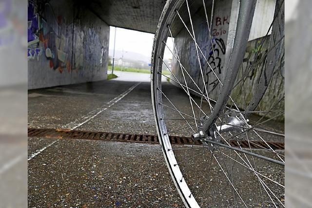 IG Velo fordert Lösungen für den Wiese-Radweg