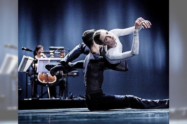 Zeitgenössischer Tanz aus aller Welt