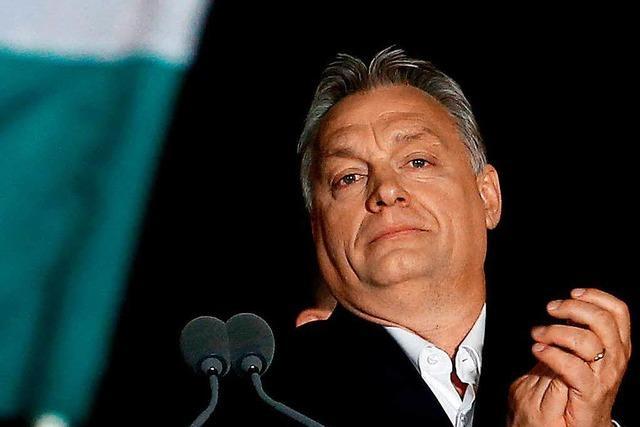 Orbans Fidesz-Partei klarer Sieger der Parlamentswahl in Ungarn