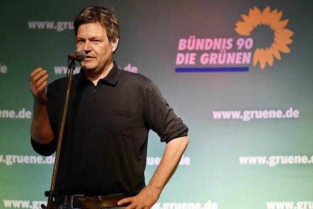 Grünen-Chef Habeck plädiert für