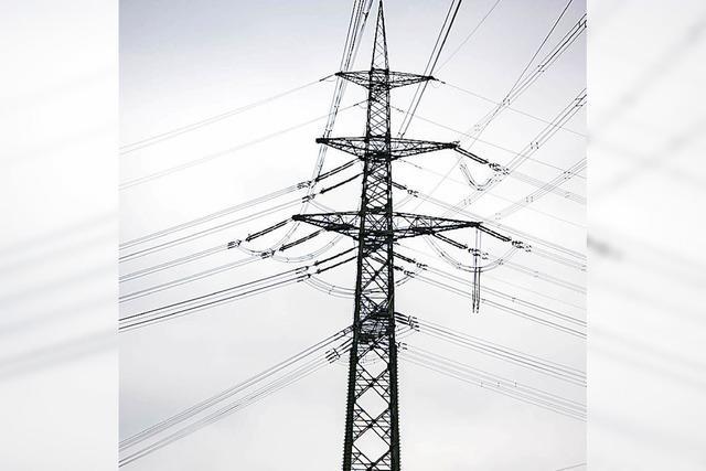 Einsatz für platzsparende Strommasten
