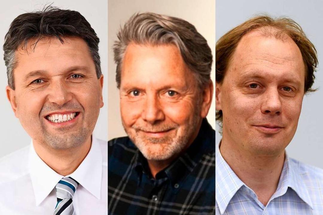 Anton Behringer (links), Stephan Wermt...staltung wird live im Netz übertragen.  | Foto: Collage/Privat