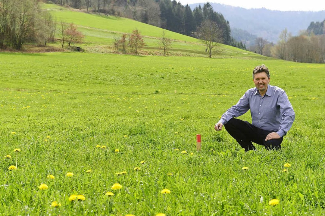 Behringer ist gegen die Bebauung der Weihermatten in Kappel.  | Foto: Ingo Schneider