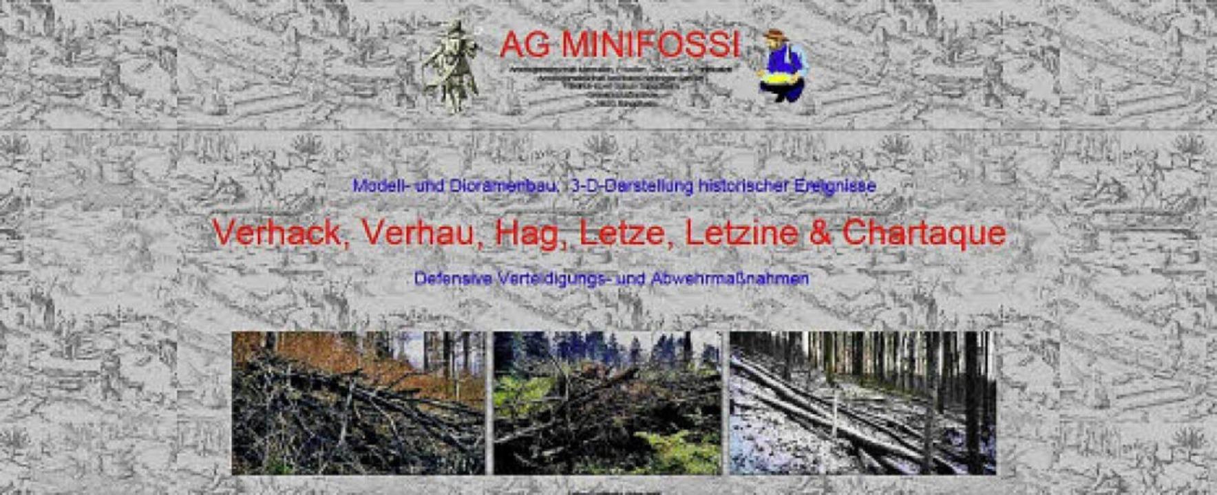 Ein reicher Quell  an Informationen is...den Besitz von Kommunen übergegangen.   | Foto: Screenshot: BZ/ Foto: André Hönig