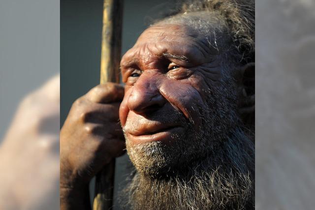 Neandertaler gut bei Puste