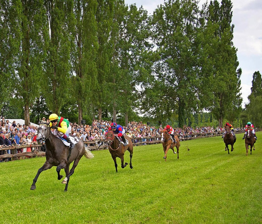 im Galopp übern Rasen: Rennen in Meißenheim  | Foto: Ch. Breithaupt/Verein