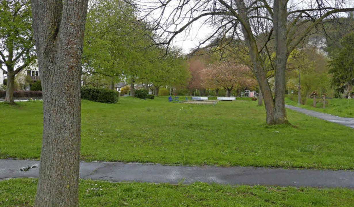 """Der Park von Istein könnte für vielfäl...ve """"Ischdai macht ebbis"""".     Foto: Jochen Fillisch"""