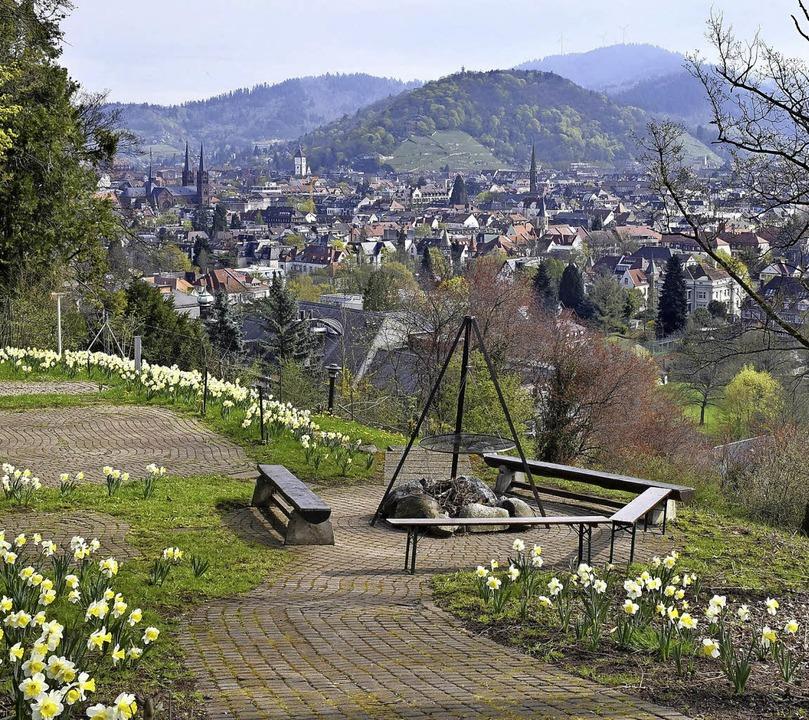 Der Verein Queen-Auguste-Victoria-Park...g Richtung Innenstadt und Schlossberg.  | Foto: Thoma Kunz