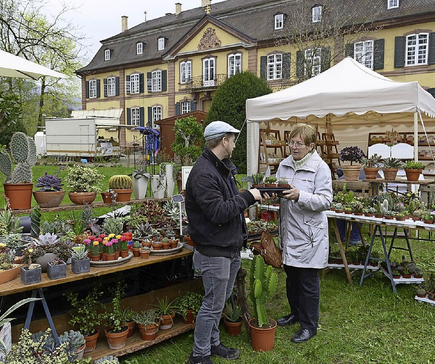 Im Ebneter Schlosspark findet bis Sonntag das Gartenfestival statt.   | Foto: Ingo Schneider