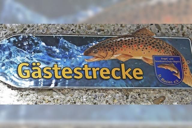 Fisch und Gast finden sich