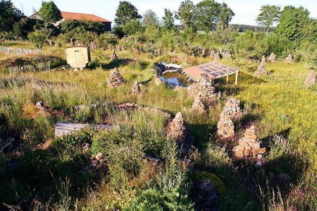 Immer mehr Naturfreunde machen aus ihren Gärten Zufluchtsorte für bedrohte Arten