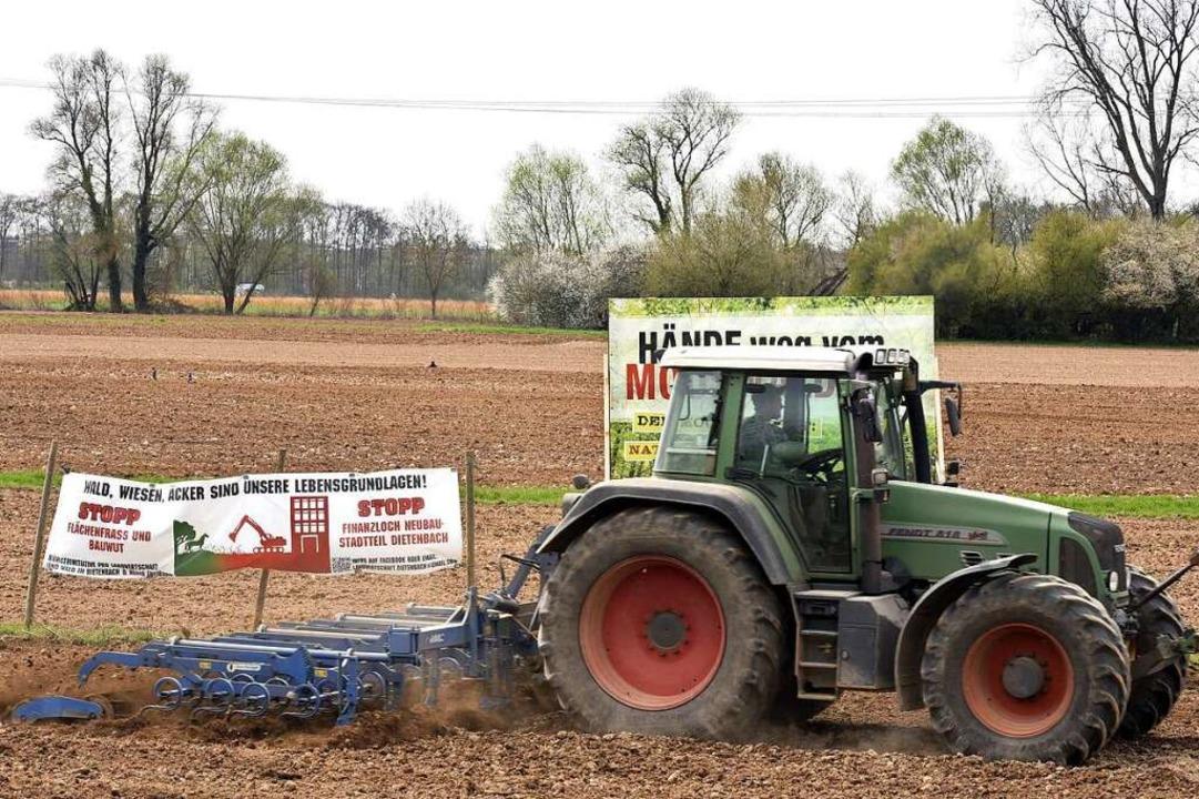 Weizen, Gerste, Mais: Auf dem Dietenbachgelände wird im Frühjahr gesät.  | Foto: Thomas Kunz