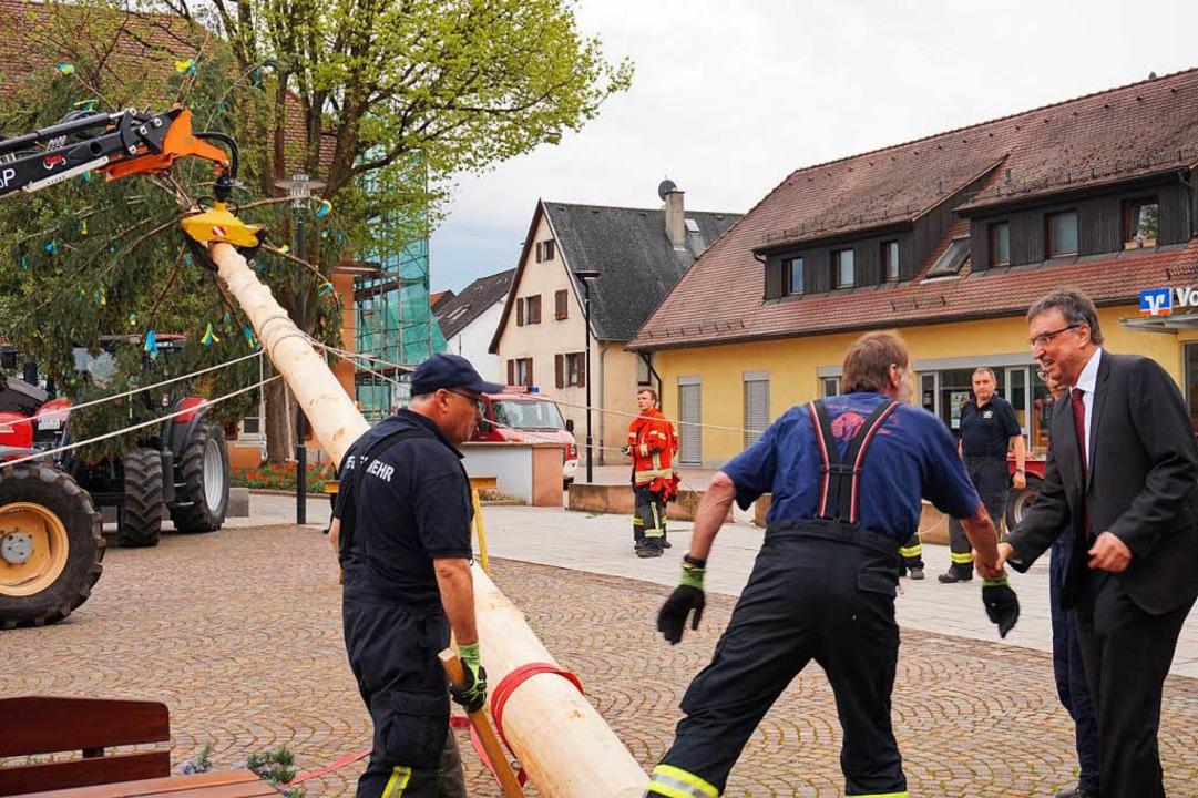 Die Feuerwehr macht sich ans Aufrichten der Bürgermeistertanne.  | Foto: Julius Wilhelm Steckmeister