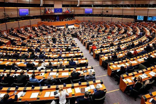 Ohne Mindesthürde kommen zu viele Provokateure und schräge Vögel ins EU-Parlament