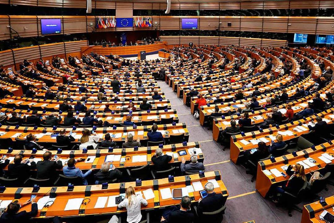 Eine Prozenthürde würde helfen, die po...e im EU-Parlament sinnvoll zu bündeln.  | Foto: dpa