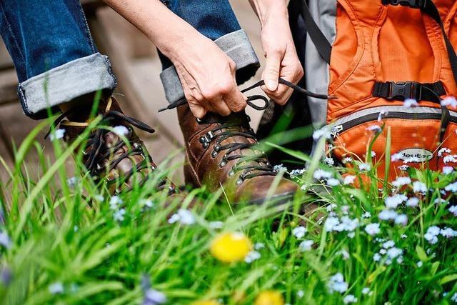 Im Schwarzwald gibt es jetzt Wandertouren für Singles