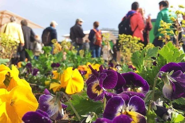 Landesgartenschau hat am Wochenende länger geöffnet
