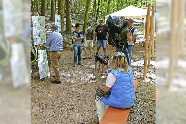 Waldtag als Besuchermagnet