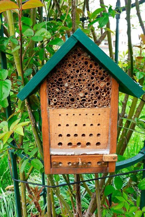 Insektenhotels sind angesichts des Ins... zur Sicherung des Wildbienenbestands.  | Foto: heinz scholz