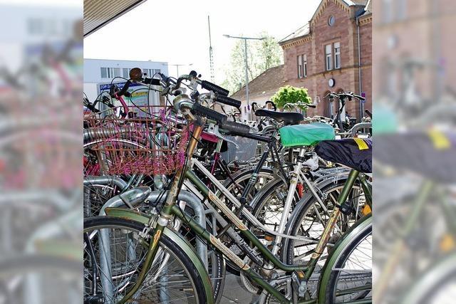 Die Fahrraddiebe trüben das Bild