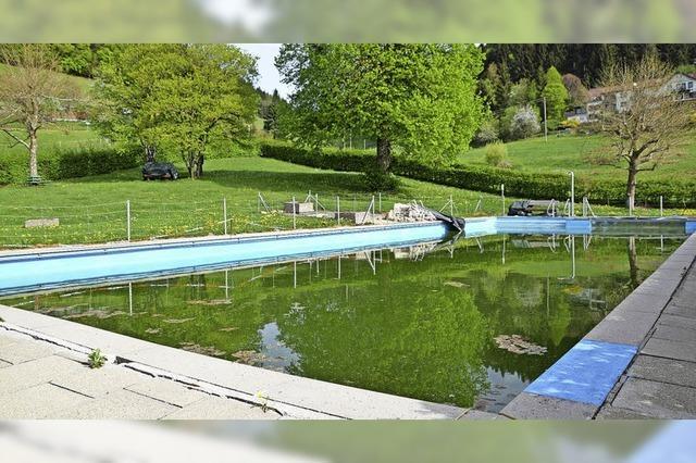 Noch wohnen Frösche im Becken