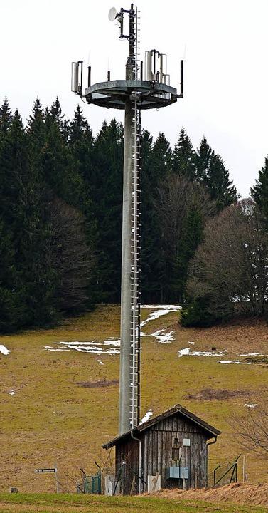 So oder ähnlich könnte er aussehen, de...s Exemplar steht am Hau bei Neuenweg.   | Foto: Sattelberger