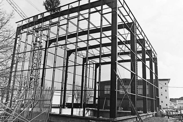 Ein Stahlkäfig für Bohrer und Dübel