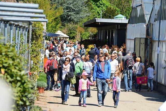 Stadtgärtnerei am Mundenhof lädt am Wochenende zum Frühlingsfest